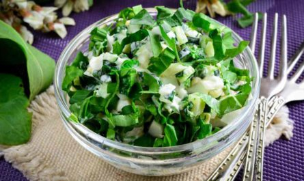 Летние салаты с зеленью: рецепты приготовления изысканных блюд