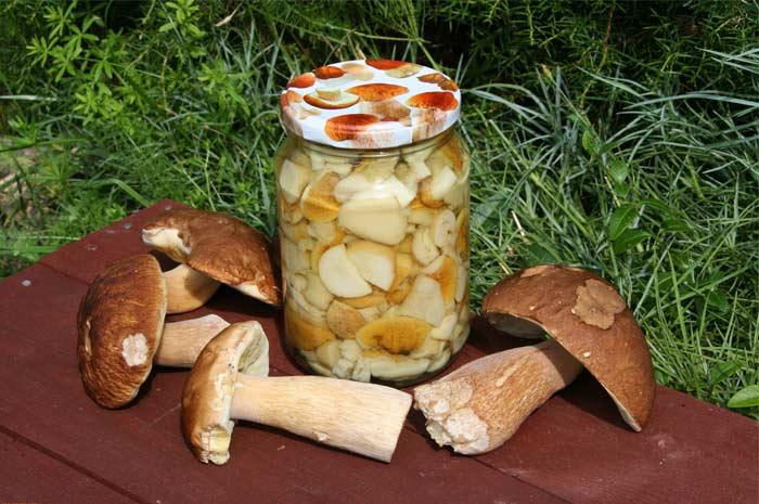 Белые грибы горячей засолки