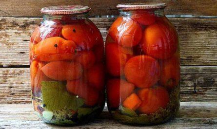 Помидоры на зиму: рецепты приготовления вкусных томатных разносолов